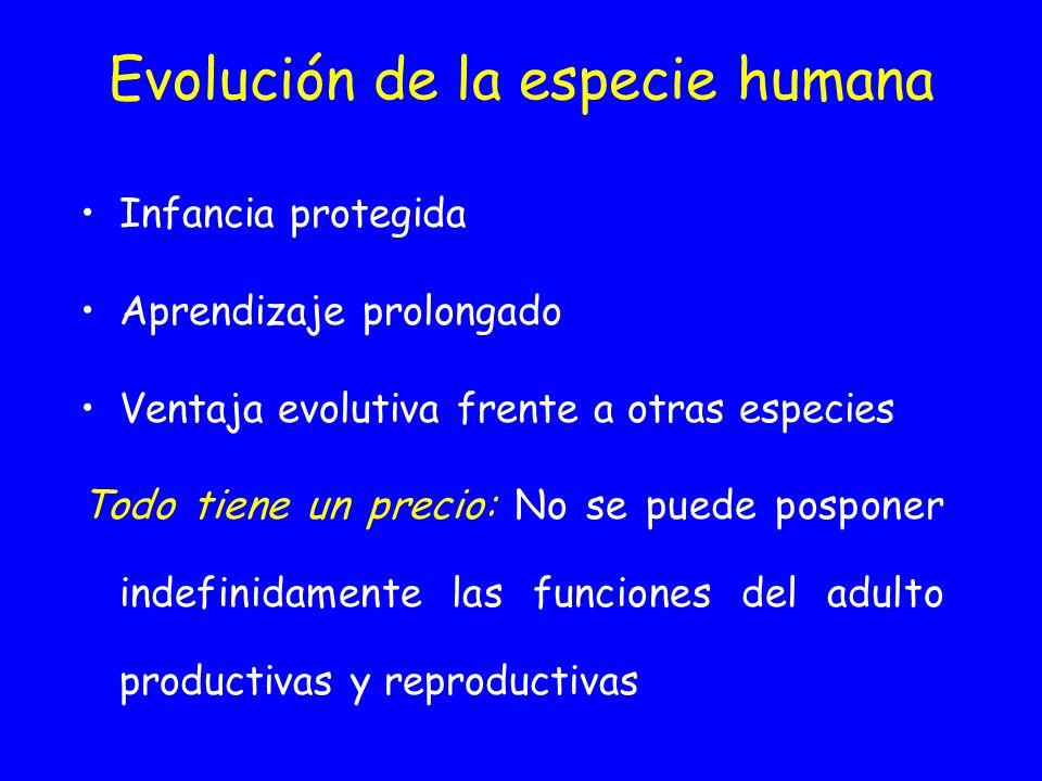 Evolución de la especie humana Infancia protegida Aprendizaje prolongado Ventaja evolutiva frente a otras especies Todo tiene un precio: No se puede p
