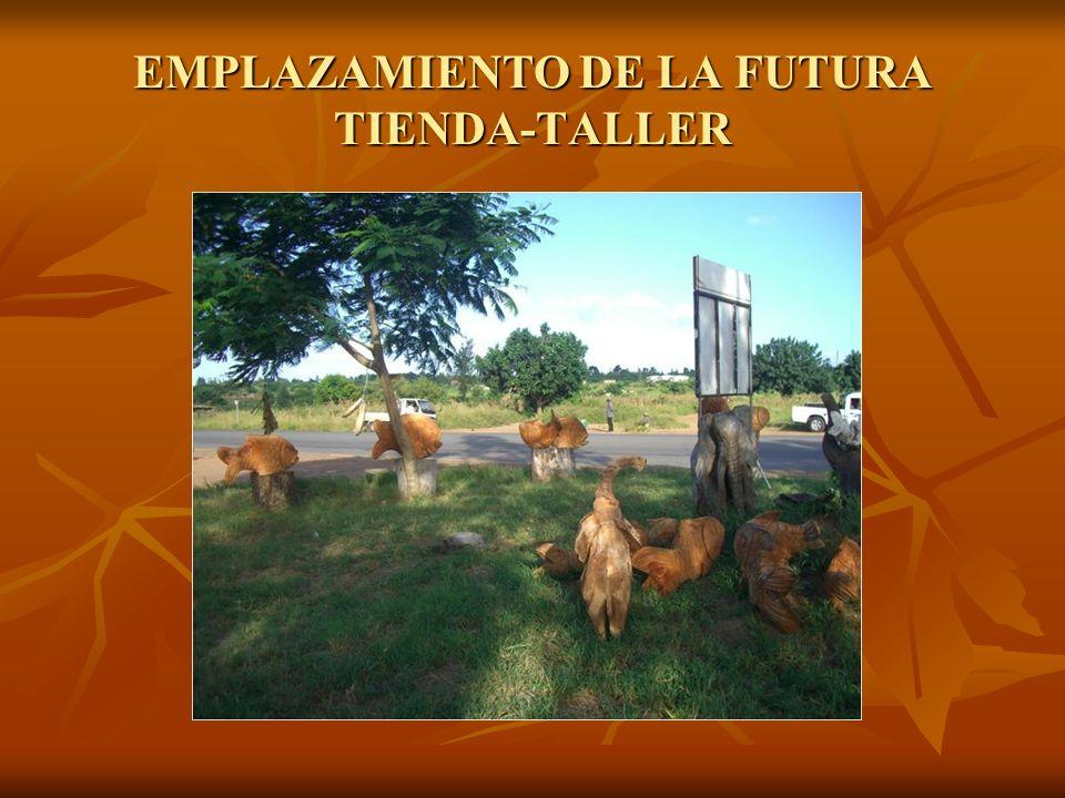 EMPLAZAMIENTO DE LA FUTURA TIENDA-TALLER