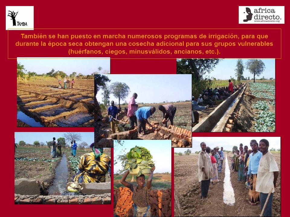 También se han puesto en marcha numerosos programas de irrigación, para que durante la época seca obtengan una cosecha adicional para sus grupos vulnerables (huérfanos, ciegos, minusválidos, ancianos, etc.).