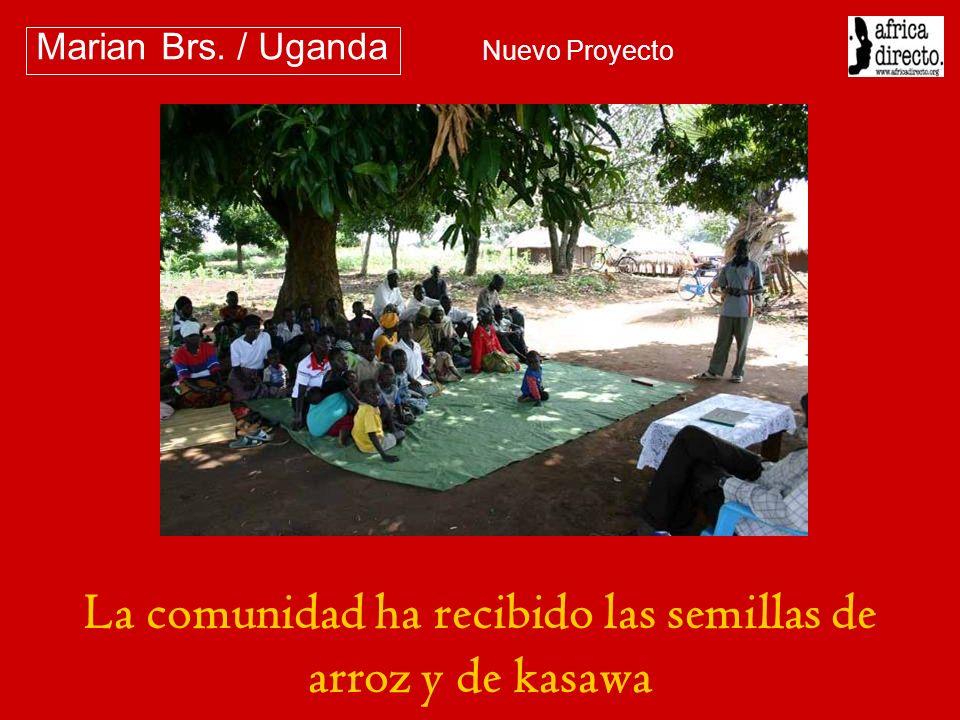 La comunidad ha recibido las semillas de arroz y de kasawa Marian Brs. / Uganda Nuevo Proyecto