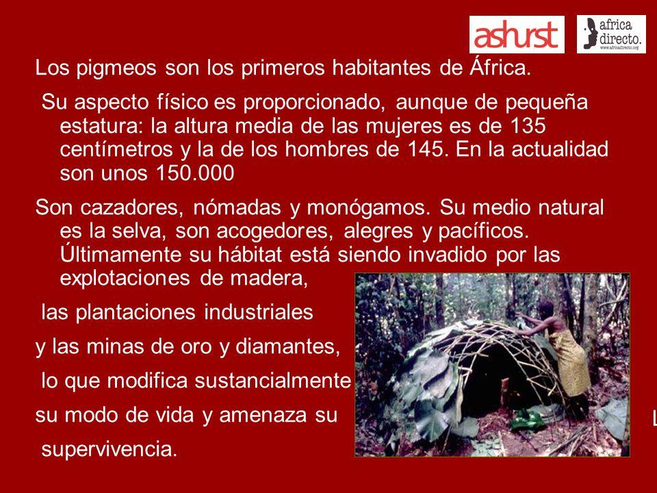 Viven en la selva, en pequeños poblados Los hombres se dedican a la caza de pequeños animales, con arco y flechas.