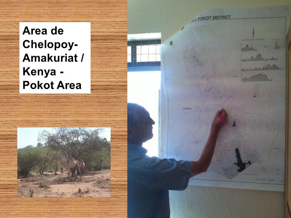 Area de Chelopoy- Amakuriat / Kenya - Pokot Area