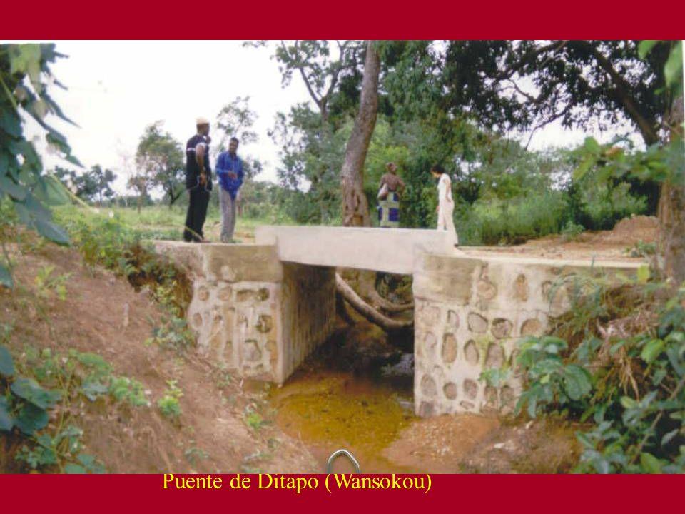 Puente de Ditapo (Wansokou)