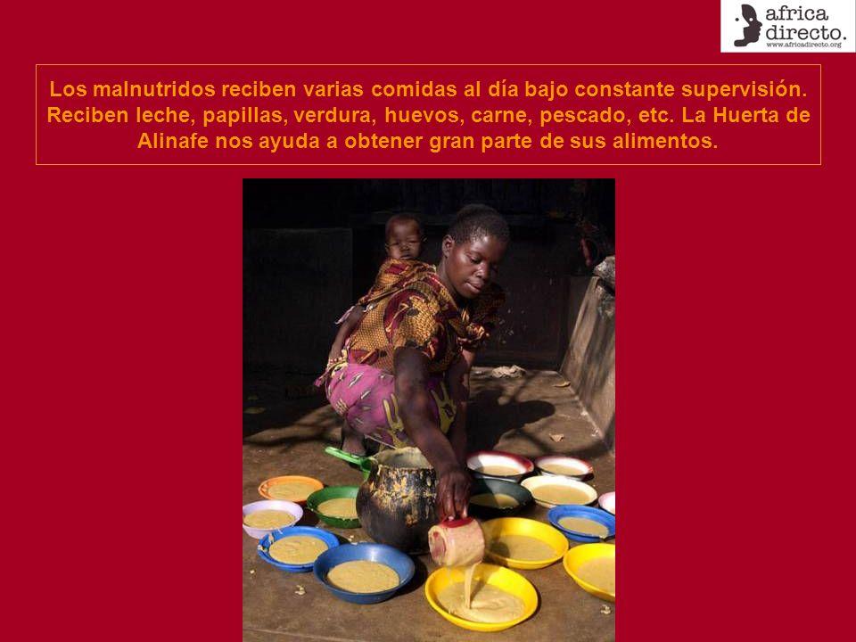 Los malnutridos reciben varias comidas al día bajo constante supervisión. Reciben leche, papillas, verdura, huevos, carne, pescado, etc. La Huerta de