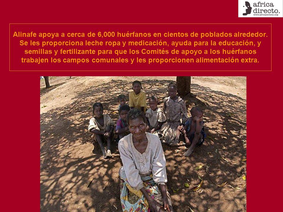 Alinafe apoya a cerca de 6,000 huérfanos en cientos de poblados alrededor. Se les proporciona leche ropa y medicación, ayuda para la educación, y semi