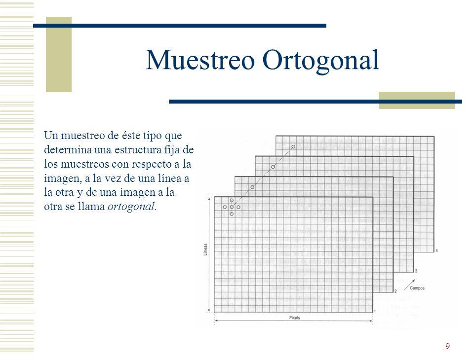 9 Muestreo Ortogonal Un muestreo de éste tipo que determina una estructura fija de los muestreos con respecto a la imagen, a la vez de una línea a la