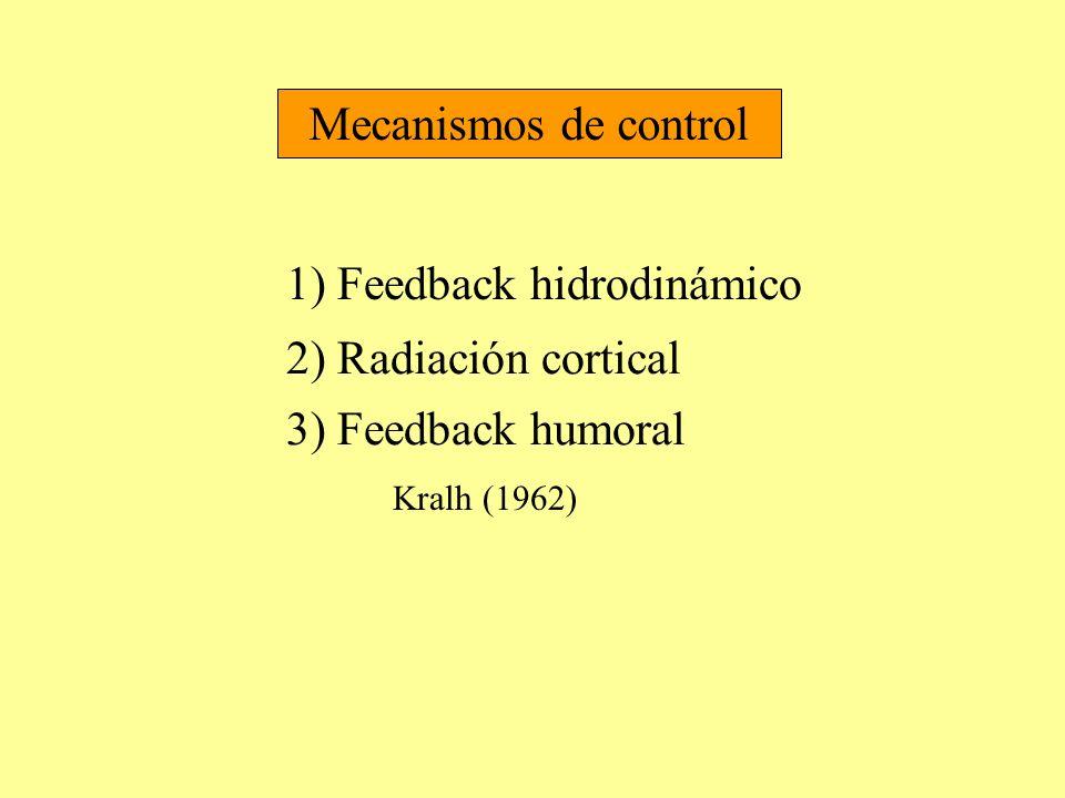 Mecanismos de control 1) Feedback hidrodinámico 2) Radiación cortical 3) Feedback humoral Kralh (1962)