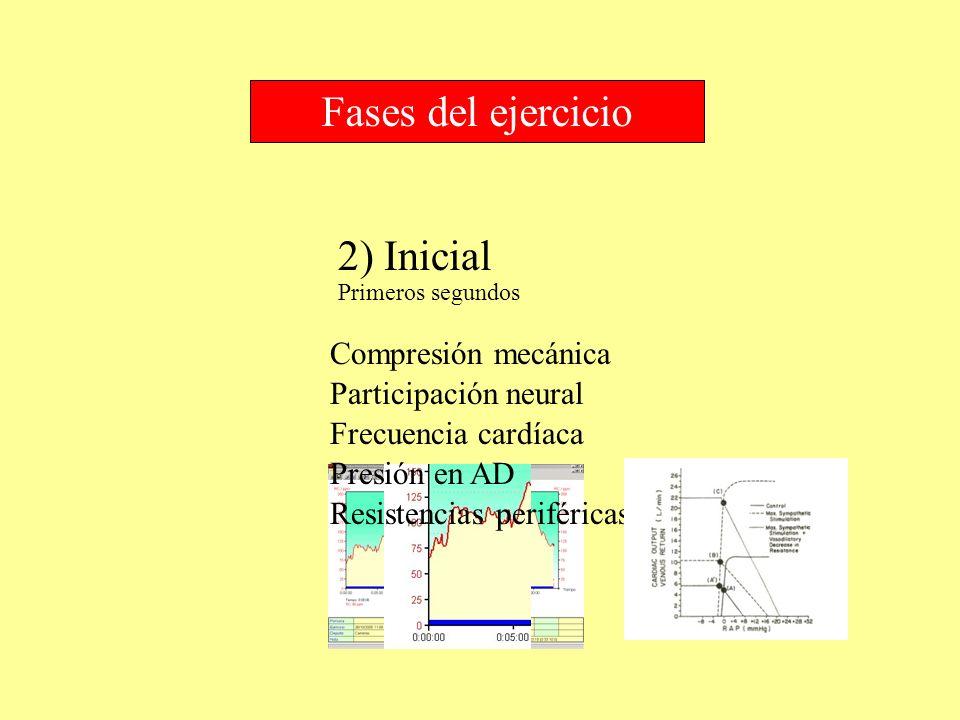 2) Inicial Fases del ejercicio Compresión mecánica Primeros segundos Participación neural Frecuencia cardíaca Presión en AD Resistencias periféricas