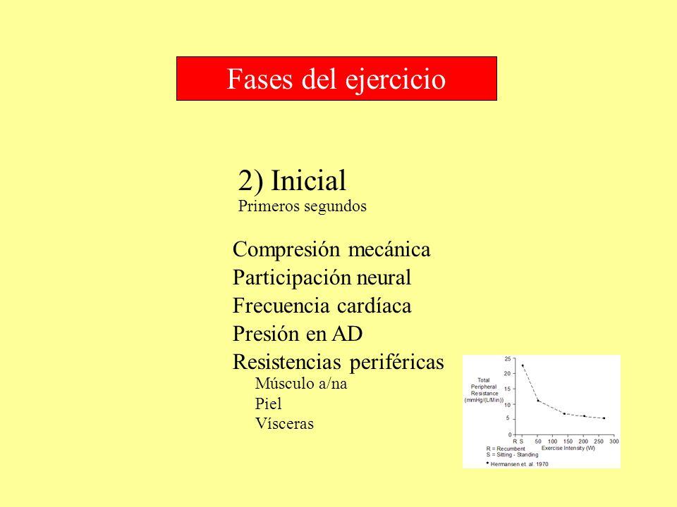 2) Inicial Fases del ejercicio Compresión mecánica Primeros segundos Participación neural Frecuencia cardíaca Presión en AD Resistencias periféricas M