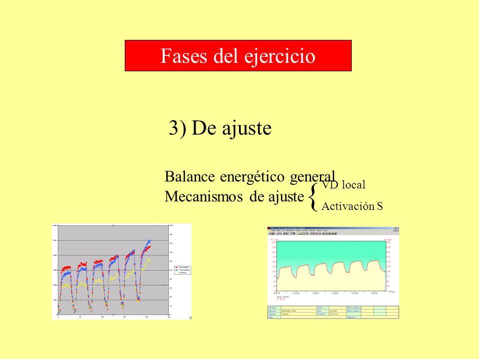 3) De ajuste Fases del ejercicio Balance energético general Mecanismos de ajuste VD local Activación S {