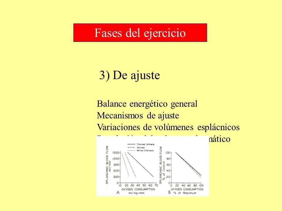 3) De ajuste Fases del ejercicio Balance energético general Mecanismos de ajuste Variaciones de volúmenes esplácnicos Regulación del volumen plasmátic