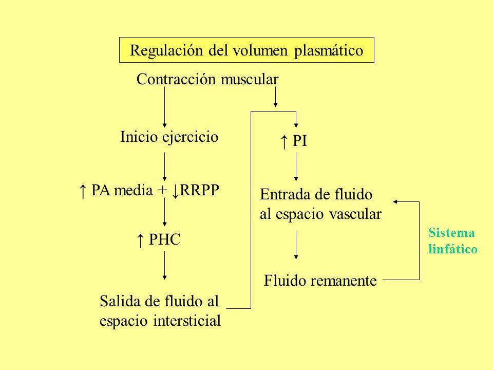 Inicio ejercicio PA media + RRPP PHC Salida de fluido al espacio intersticial PI Entrada de fluido al espacio vascular Contracción muscular Fluido rem