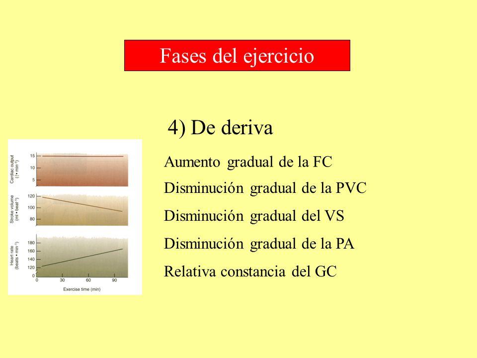 4) De deriva Fases del ejercicio Aumento gradual de la FC Disminución gradual de la PVC Disminución gradual de la PA Disminución gradual del VS Relati