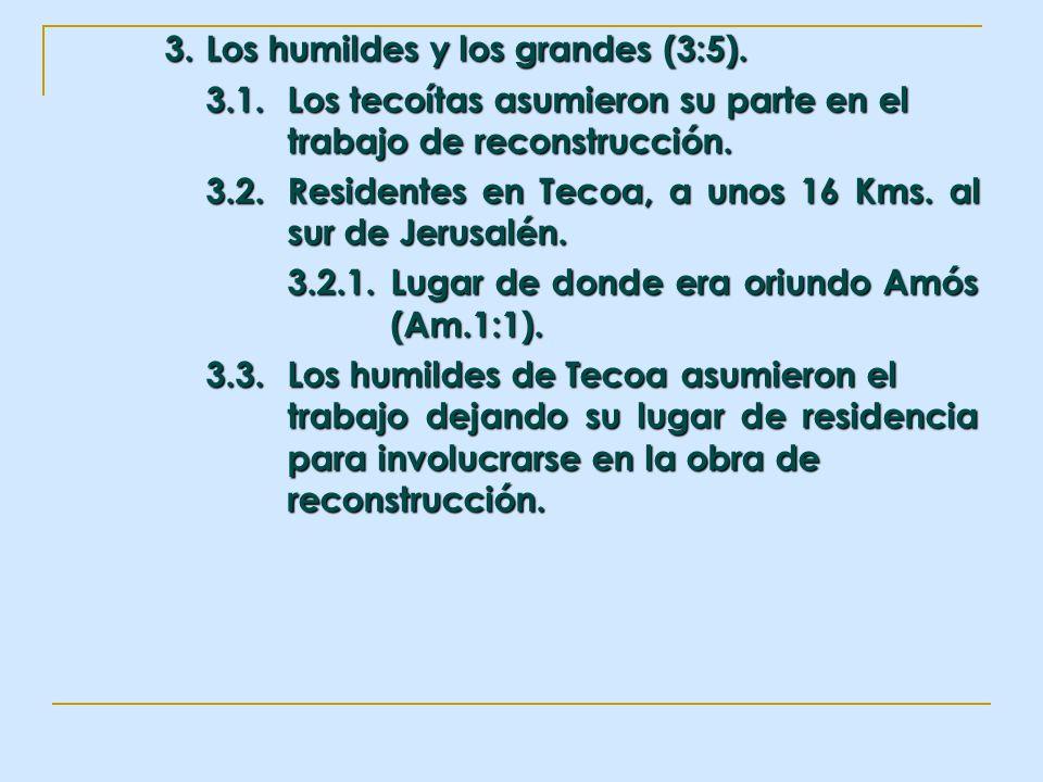 3. Los humildes y los grandes (3:5). 3.1.Los tecoítas asumieron su parte en el trabajo de reconstrucción. 3.2.Residentes en Tecoa, a unos 16 Kms. al s