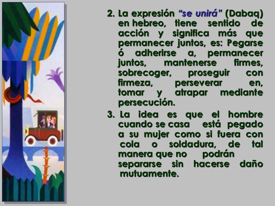 2.La expresión se unirá (Dabaq) en hebreo, tiene sentido de acción y significa más que permanecer juntos, es: Pegarse ó adherirse a, permanecer juntos