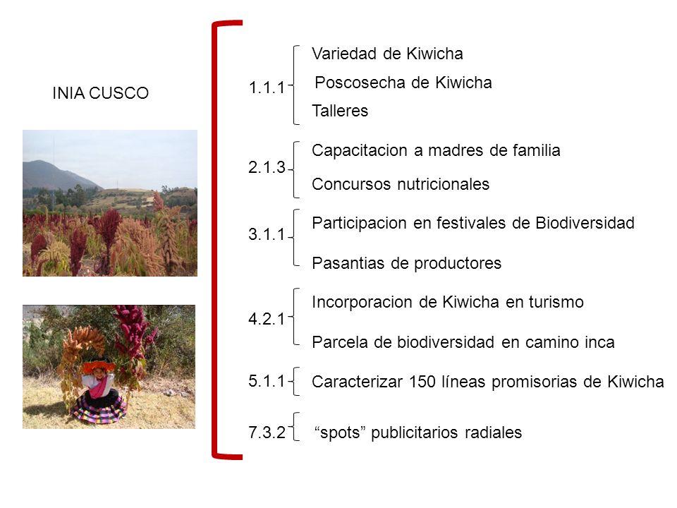 INIA CUSCO 1.1.1 2.1.3 3.1.1 4.2.1 5.1.1 7.3.2 Variedad de Kiwicha Poscosecha de Kiwicha Talleres Capacitacion a madres de familia Concursos nutricionales Participacion en festivales de Biodiversidad Pasantias de productores Incorporacion de Kiwicha en turismo Parcela de biodiversidad en camino inca Caracterizar 150 líneas promisorias de Kiwicha spots publicitarios radiales