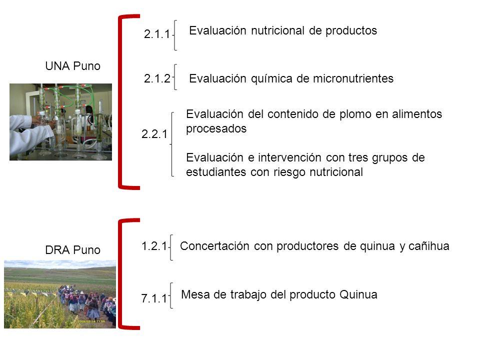 UNA Puno 2.1.1 2.1.2 2.2.1 Evaluación nutricional de productos Evaluación química de micronutrientes Evaluación del contenido de plomo en alimentos procesados Evaluación e intervención con tres grupos de estudiantes con riesgo nutricional DRA Puno 1.2.1 7.1.1 Concertación con productores de quinua y cañihua Mesa de trabajo del producto Quinua