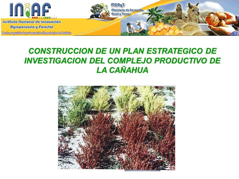 CONSTRUCCION DE UN PLAN ESTRATEGICO DE INVESTIGACION DEL COMPLEJO PRODUCTIVO DE LA CAÑAHUA