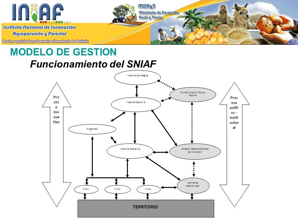 MODELO DE GESTION Funcionamiento del SNIAF Instancia Estratégica Instancia Ejecutiva Instancia Operativa Programas Proyectos TERRITORIO Consejos Depar