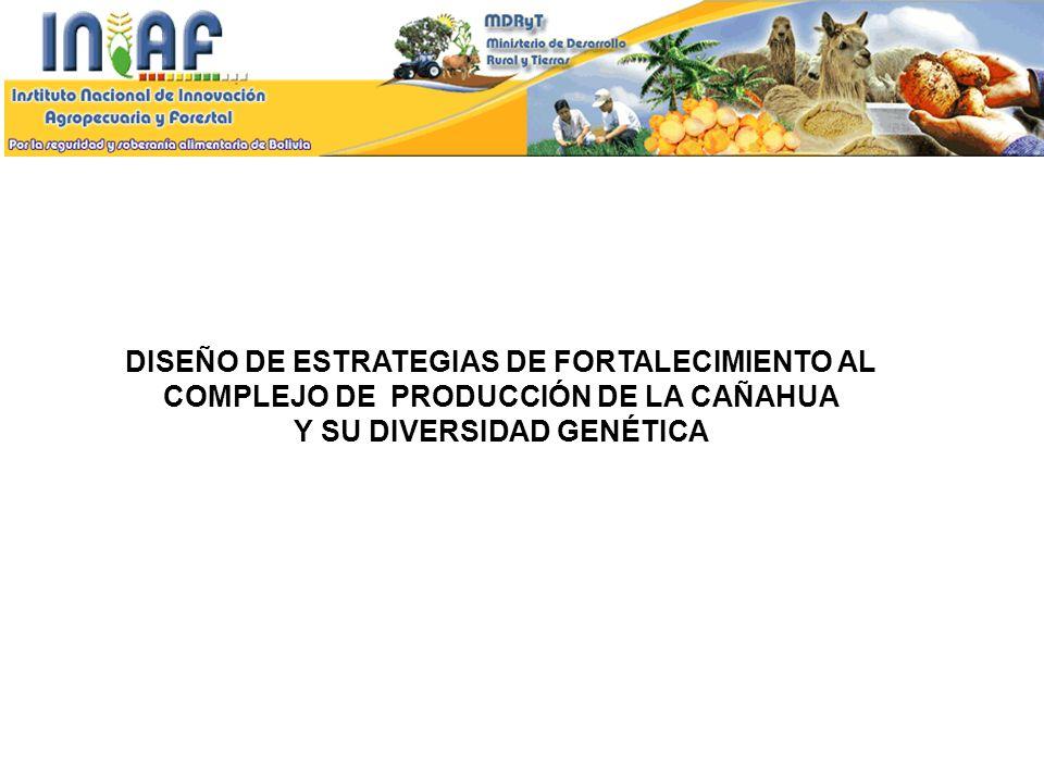 DISEÑO DE ESTRATEGIAS DE FORTALECIMIENTO AL COMPLEJO DE PRODUCCIÓN DE LA CAÑAHUA Y SU DIVERSIDAD GENÉTICA