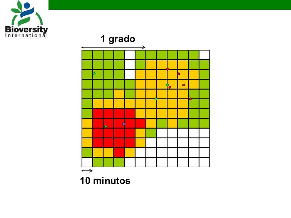 1 grado 10 minutos