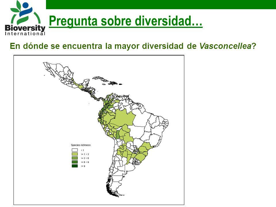 Pregunta sobre diversidad… En dónde se encuentra la mayor diversidad de Vasconcellea?