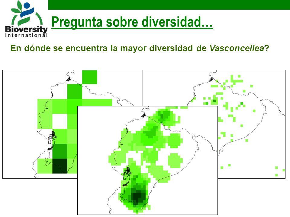 Pregunta sobre diversidad… En dónde se encuentra la mayor diversidad de Vasconcellea