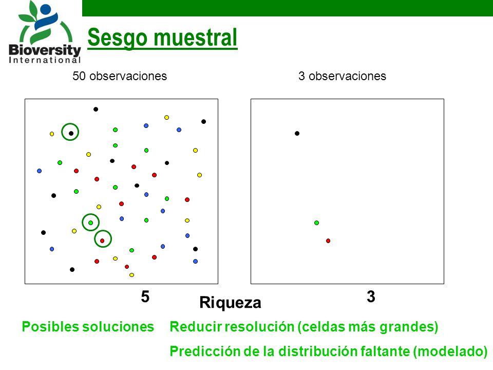 Sesgo muestral Riqueza 3 3 observaciones Posibles solucionesReducir resolución (celdas más grandes) Predicción de la distribución faltante (modelado) 5 50 observaciones
