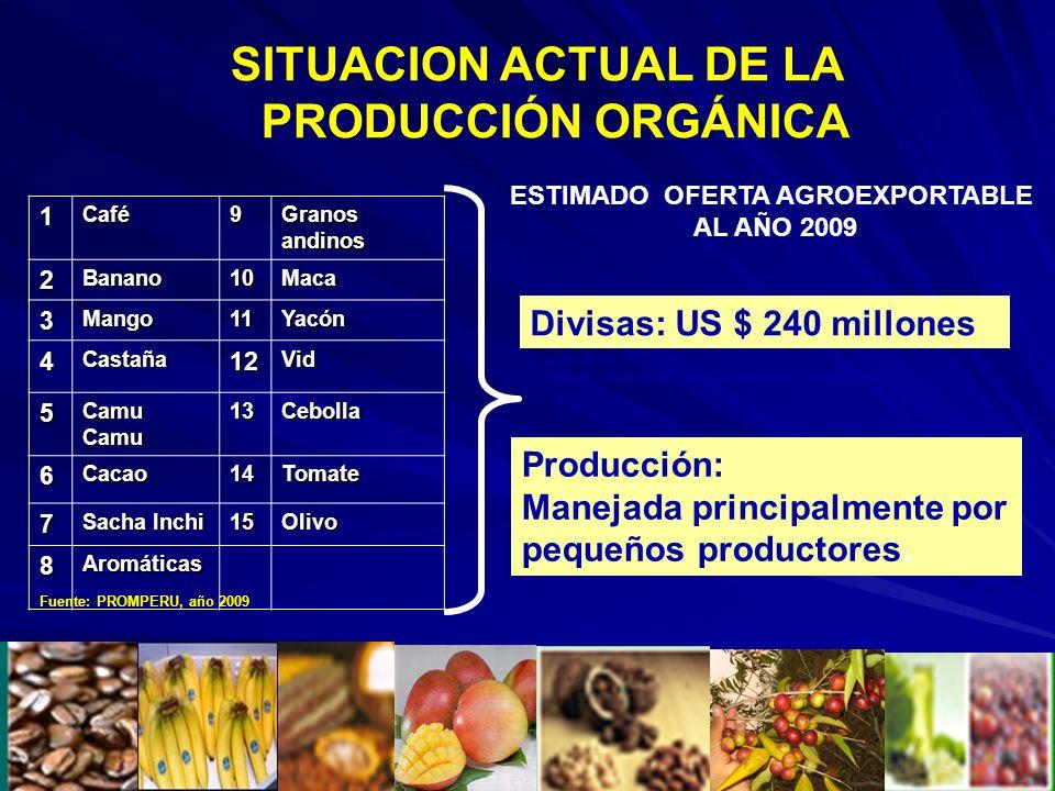 ESTIMADO OFERTA AGROEXPORTABLE AL AÑO 2009 Producción: Manejada principalmente por pequeños productores. Divisas: US $ 240 millones1Café9 Granos andin