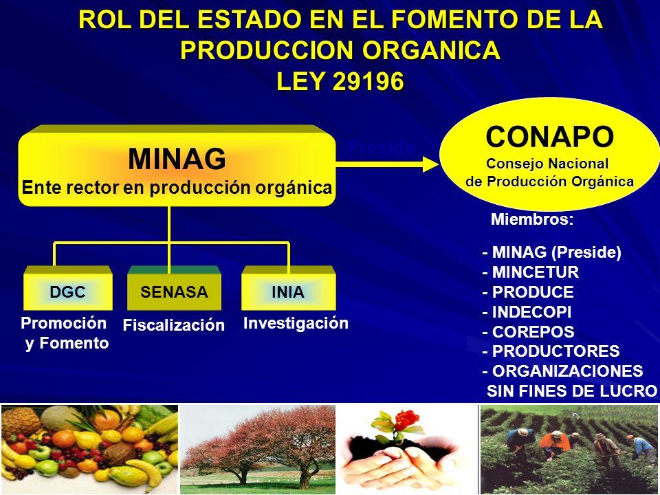ROL DEL ESTADO EN EL FOMENTO DE LA PRODUCCION ORGANICA LEY 29196 MINAG Ente rector en producción orgánica DGCSENASAINIA Miembros: - MINAG (Preside) -
