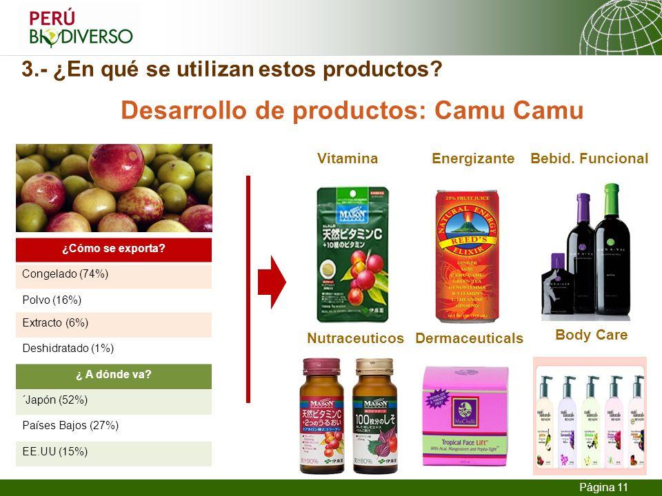 13.02.2014 Seite 11 Página 11 3.- ¿En qué se utilizan estos productos? Desarrollo de productos: Camu Camu ¿Cómo se exporta? Congelado (74%) Polvo (16%