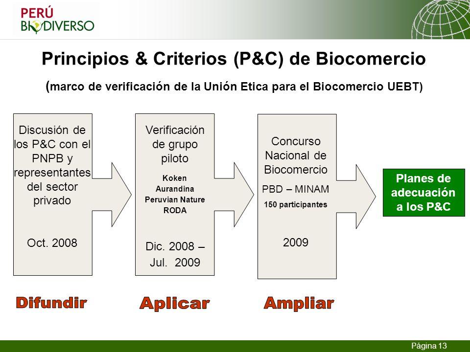 13.02.2014 Seite 13 Página 13 Principios & Criterios (P&C) de Biocomercio ( marco de verificación de la Unión Etica para el Biocomercio UEBT) Planes d