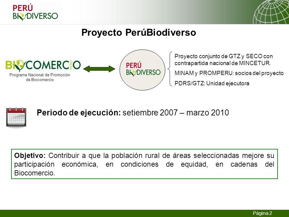 13.02.2014 Seite 2 Página 2 Periodo de ejecución: setiembre 2007 – marzo 2010 Proyecto PerúBiodiverso Proyecto conjunto de GTZ y SECO con contrapartid