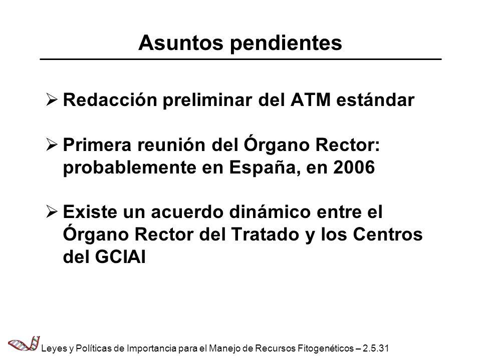 Asuntos pendientes Redacción preliminar del ATM estándar Primera reunión del Órgano Rector: probablemente en España, en 2006 Existe un acuerdo dinámic