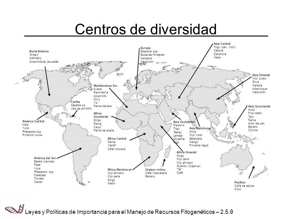 Centros de diversidad Norte América Girasol Arándano Alcachofa de Jerusalén América Central Maíz Yuca Phaseolus spp. Pimentón dulce América del Sur Ba