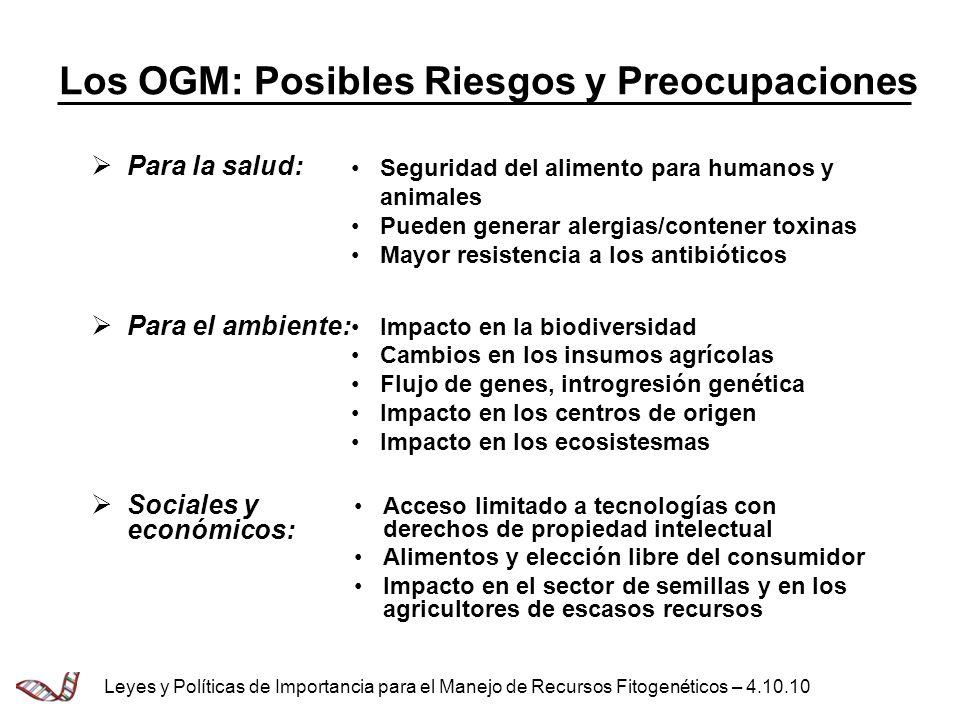 Los OGM: Posibles Riesgos y Preocupaciones Para la salud: Para el ambiente: Sociales y económicos: Seguridad del alimento para humanos y animales Pued