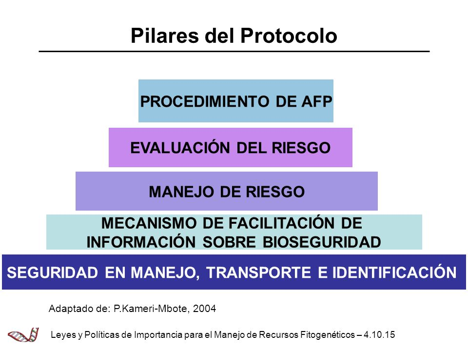 Pilares del Protocolo SEGURIDAD EN MANEJO, TRANSPORTE E IDENTIFICACIÓN MANEJO DE RIESGO EVALUACIÓN DEL RIESGO MECANISMO DE FACILITACIÓN DE INFORMACIÓN