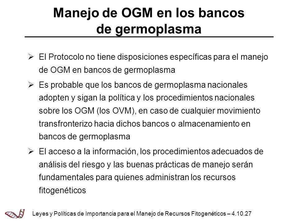 Manejo de OGM en los bancos de germoplasma El Protocolo no tiene disposiciones específicas para el manejo de OGM en bancos de germoplasma Es probable