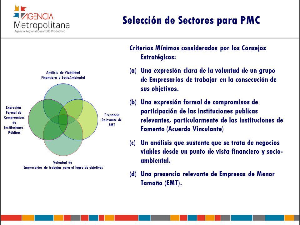 Criterios Mínimos considerados por los Consejos Estratégicos: (a)Una expresión clara de la voluntad de un grupo de Empresarios de trabajar en la conse