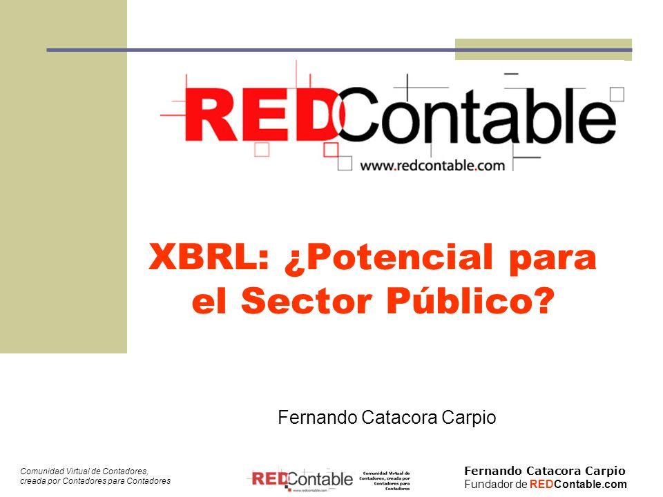 Fernando Catacora Carpio Fundador de REDContable.com Comunidad Virtual de Contadores, creada por Contadores para Contadores 12 ¿Qué entendemos por Sector Público.