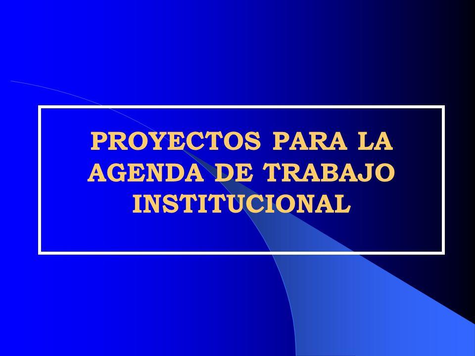 PROYECTOS PARA LA AGENDA DE TRABAJO INSTITUCIONAL