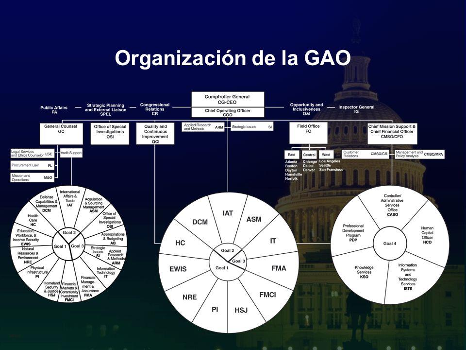 10 Organización de la GAO