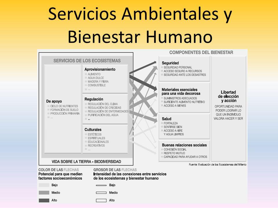 Servicios Ambientales y Bienestar Humano