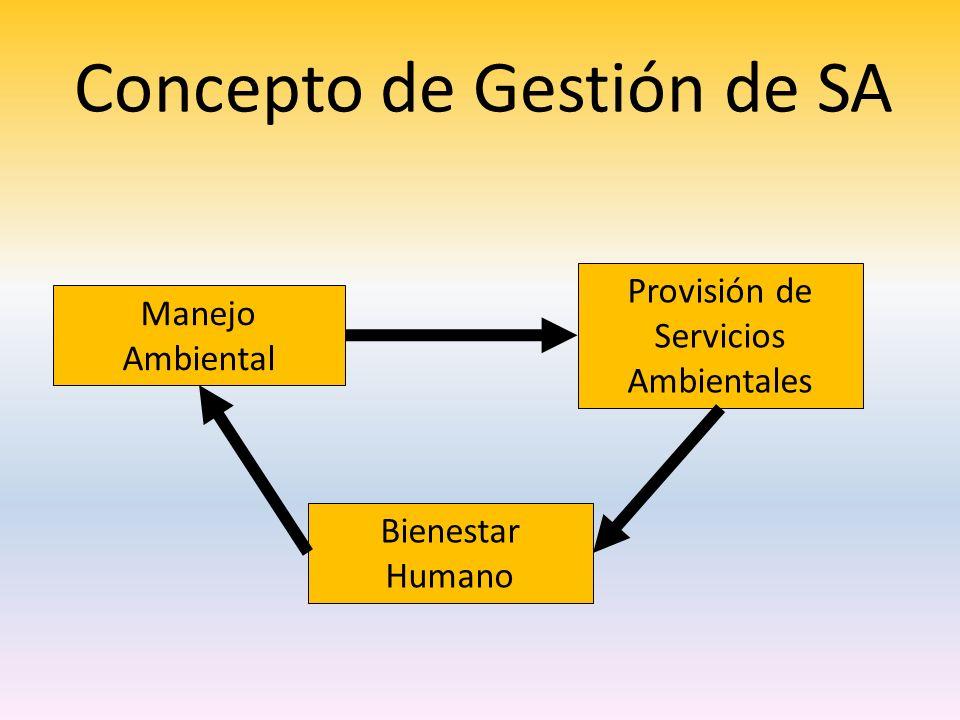 Concepto de Gestión de SA Manejo Ambiental Bienestar Humano Provisión de Servicios Ambientales