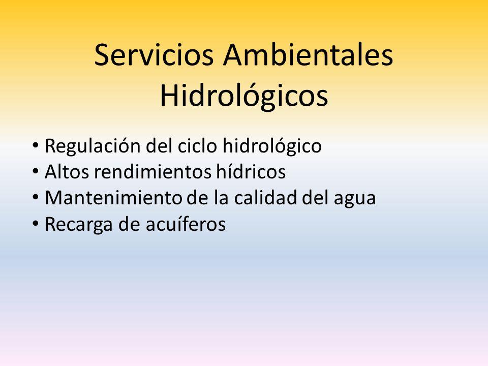 Servicios Ambientales Hidrológicos Regulación del ciclo hidrológico Altos rendimientos hídricos Mantenimiento de la calidad del agua Recarga de acuíferos