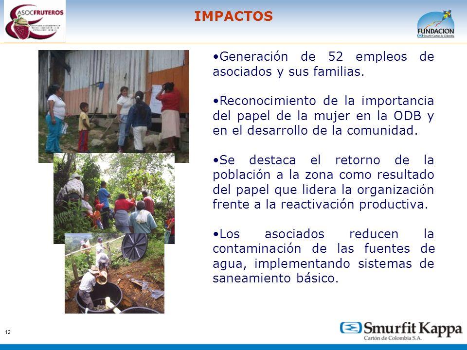12 IMPACTOS Generación de 52 empleos de asociados y sus familias. Reconocimiento de la importancia del papel de la mujer en la ODB y en el desarrollo