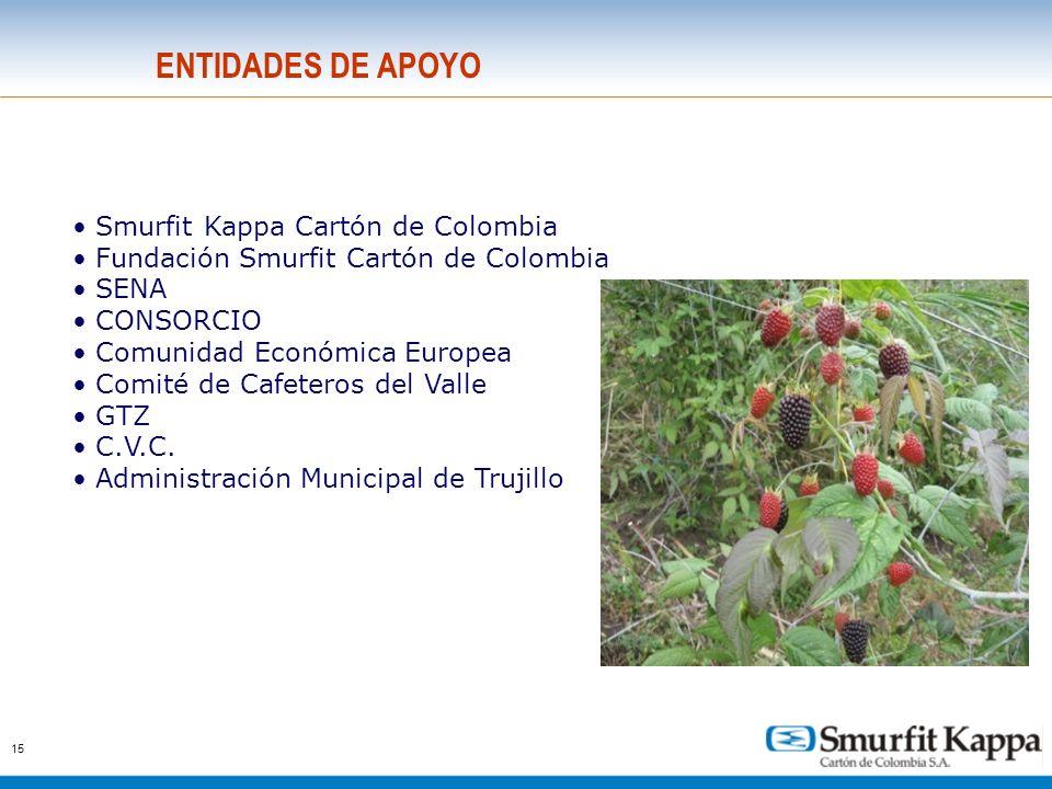 15 ENTIDADES DE APOYO Smurfit Kappa Cartón de Colombia Fundación Smurfit Cartón de Colombia SENA CONSORCIO Comunidad Económica Europea Comité de Cafet