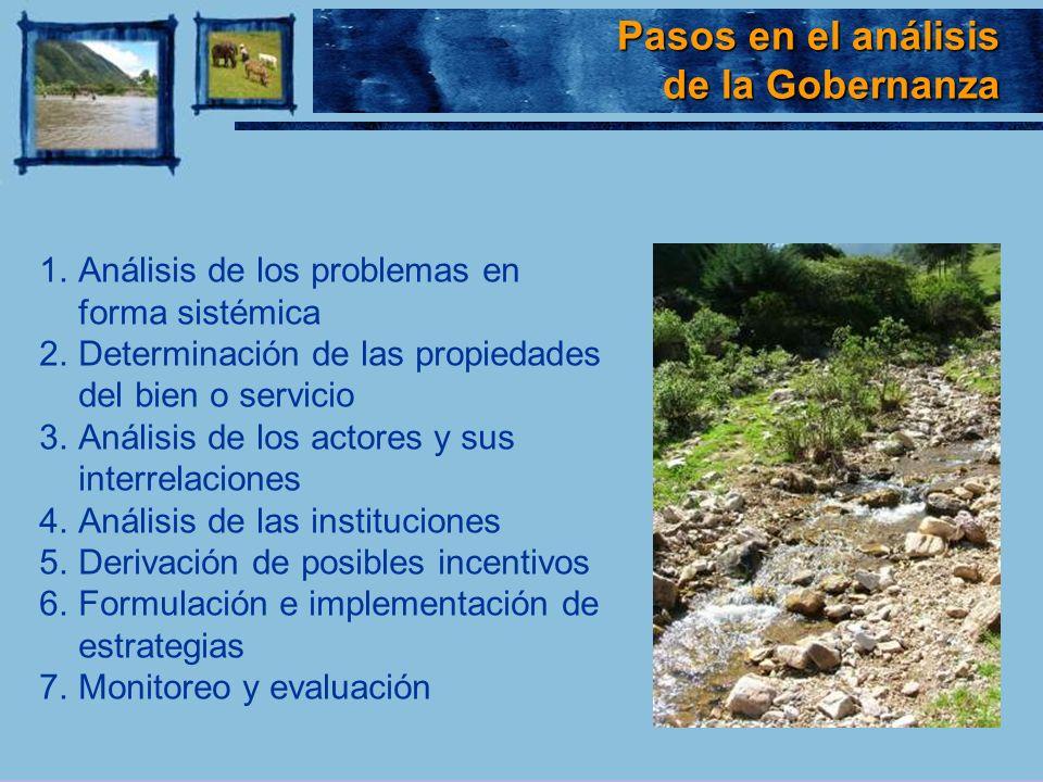 Pasos en el análisis Pasos en el análisis de la Gobernanza 1.Análisis de los problemas en forma sistémica 2.Determinación de las propiedades del bien