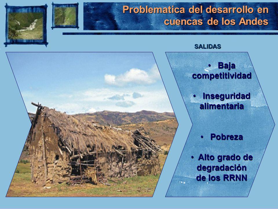 Problematica del desarrollo en cuencas de los Andes Baja Bajacompetitividad Inseguridad alimentaria Inseguridad alimentaria Pobreza Pobreza Alto grado