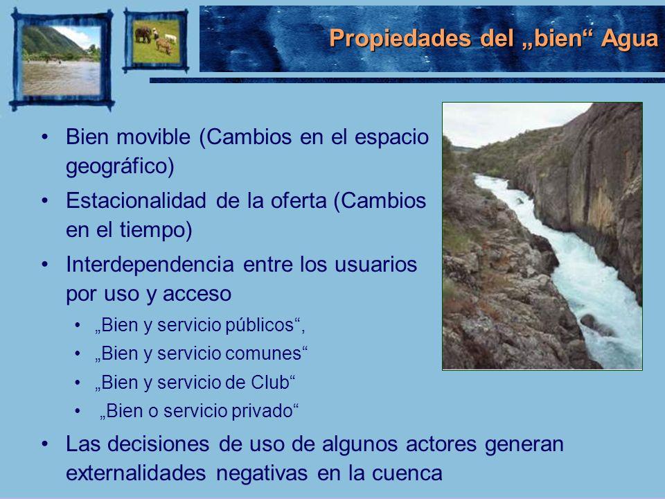 Propiedades del bien Agua Bien movible (Cambios en el espacio geográfico) Estacionalidad de la oferta (Cambios en el tiempo) Interdependencia entre lo